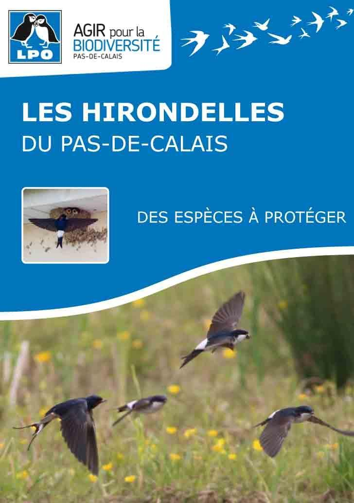 Lpo62 brochure hirondelle 1